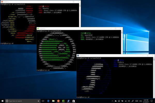 De nouvelles distributions Linux bientôt portées sur Windows10 - Windows 10 ©