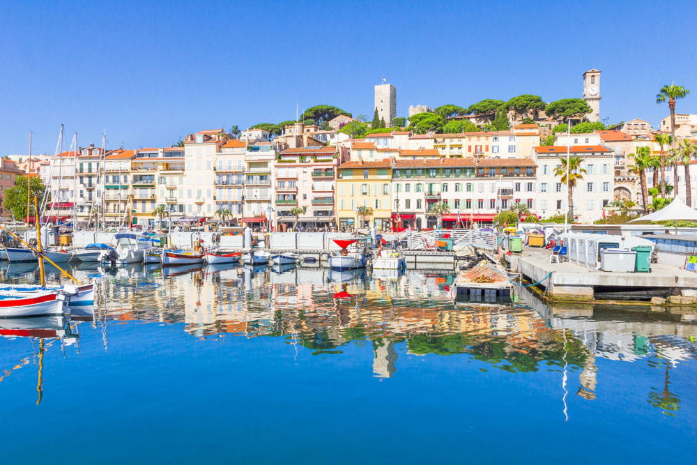 Résultat élection présidentielle Cannes